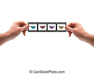 Photography - Hands isolated against a white background with...