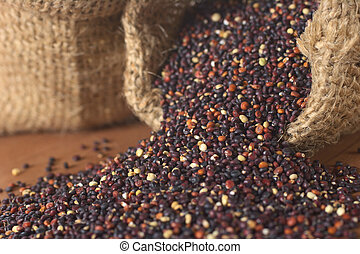 Raw red quinoa grains in jute sack on wood. Quinoa is grown in the Andes and is valued for its high protein content and nutritional value (Selective Focus, Focus on the quinoa at the right sack openin