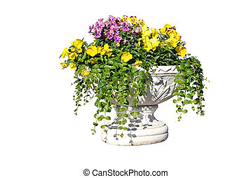 white pot with yellow, pink flowers