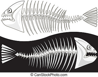 Bones of a skeleton of fish