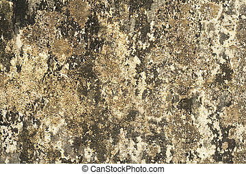 Grungy blob wall background