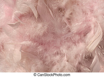 Fluffy pink sunlit feather background