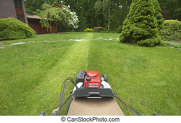 Lawnmower cutting grass as viewed by operator