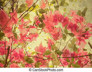 Pink bougainvillea art background with text space