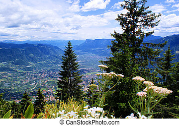 View in the Etschtal in South Tyrol - The view sweeps from...