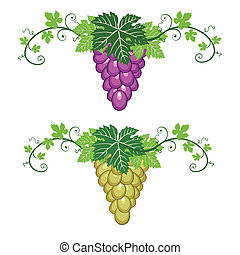 Grapes border with leaves on white - Blue and yellow grapes...