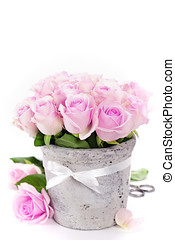 roses in a pot - bouquet of pink roses in a pot on the white...