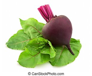 Young beet with leaves on a white background