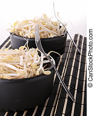 soya bean sprout - bowl of soya sprout bean