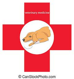 Veterinary medicine - Vector illustration of a Veterinary...