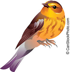 yellow bird - illustration of an yellow bird