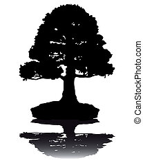 Japanese bonsai  tree  silhouette  on white background