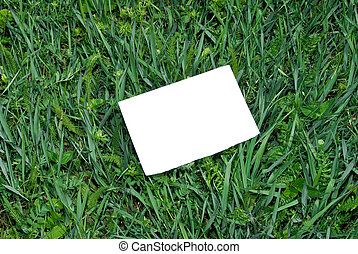 Note blank on green grass