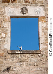 Pigeon in the window of an ancient ruin.
