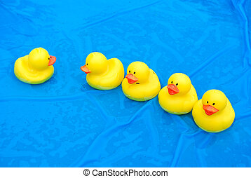 Yellow rubber ducks in wading pool.