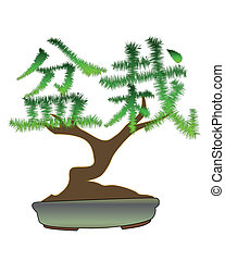 Japanese bonsai tree in the form of hieroglyphs on a white...
