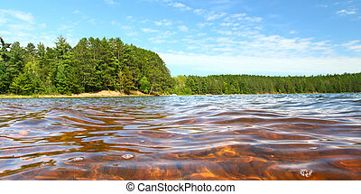 Clear Waters of Northwoods Wisconsin - Beautiful sunny day...