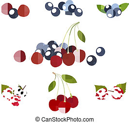 Group of berries - Photo-realistic vector illustration Group...