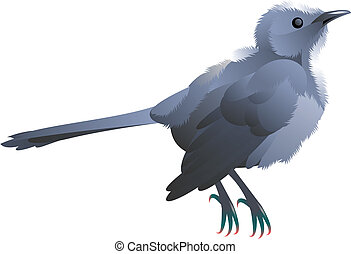 grey bird - illustration of a grey bird