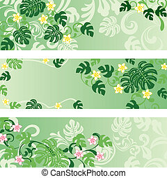 Monstera banners set - Illustration vector