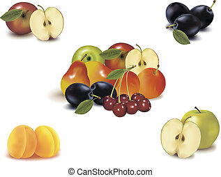 Big group of different fruit - Photo-realistic vector...