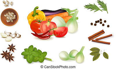 Set with spices and vegetables Vector illustration