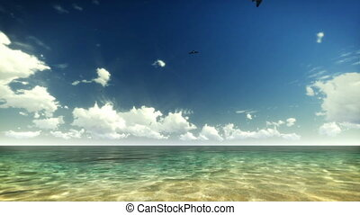 Tropical Water and Birds