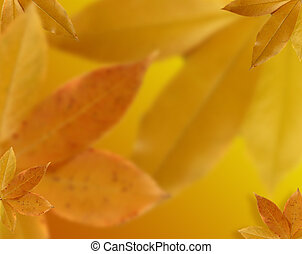 Fall leaves background - Background from fall, autumn leaves...
