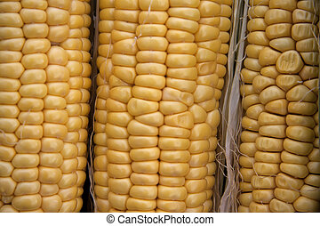 Corncobs - A close up to corncobs on a counter in an open...