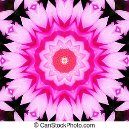 Flower Kaleidoscopic Background - A Kaleidoscopic background...