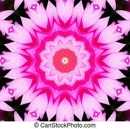 Flower Kaleidoscopic Background - A Kaleidoscopic background...