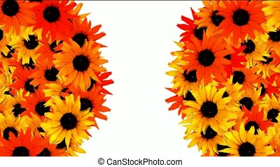 rotation sunflower balls as wedding background,disco neon...