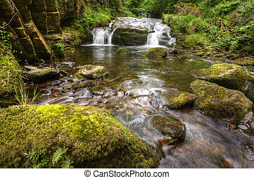 Lush green forest scene with long exposure blurred waterfall flowing through and over rocks covered in lichen and moss