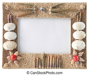 series of seashells scattered around the frame. isolate over...