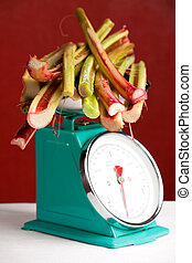 bunch of rhubarb on the scales