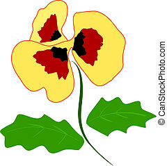 Illustration of Pansy