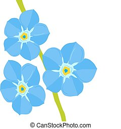Illustration of Forget-me-not