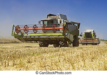Agriculture - Combines harvesters on the field