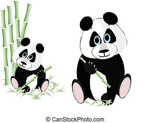 Two pandas eating bamboo - Two pandas eating bamboo over...