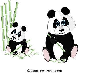 Two pandas eating bamboo...