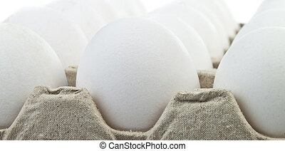 eggs - white eggs in a box for your design