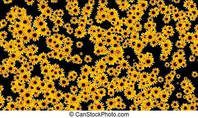 sunflower as wedding background,disco neon flower pattern