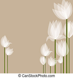 White tulips - Vector picture with white tulips on black...