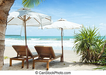 tropic site - view of two chairs and white umbrella on the...