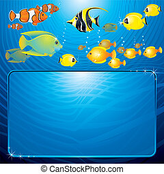 Tropical Template - Sea Life scene with variety tropical...