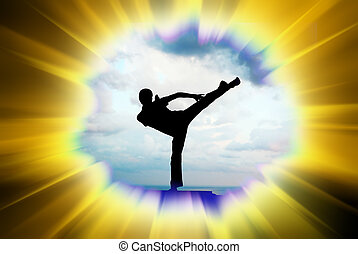 Kung fu illustration. Element of design.