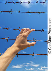 Hand of prison and sky background Conceptual scene