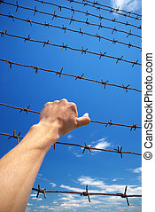 Prison - Hand of prison and sky background. Conceptual...