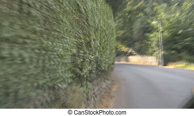 Moving close to hedge - A blurry view of a green hedge from...