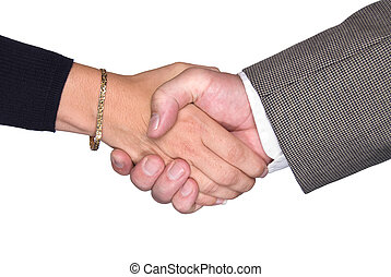 Male and female shaking hands - Male and female partners...